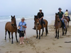 A beach outing of the Victorian Brumby Association with VBA Wattle, VB Anzac and VBA Aurora