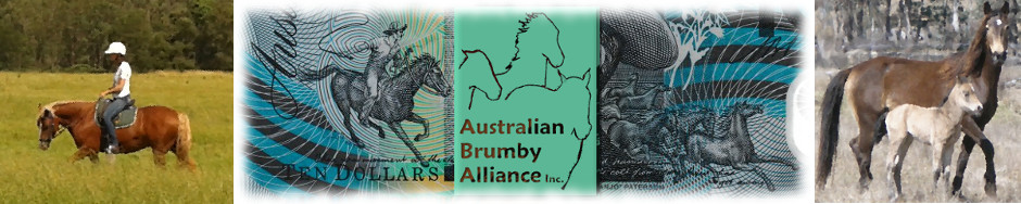 Australian Brumby Alliance Inc.
