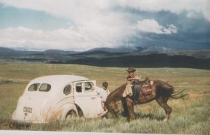 Currango Plain, 1953, Ted Taylor