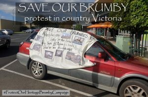 Save Our Brumbies protest